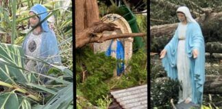 Imágenes marianas que han sobrevivido entre maleza y destrozos al huracán Ida en Nueva Orleans